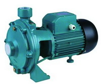 "Picture of ""POLO"" WATER PUMP 220V/50HZ"